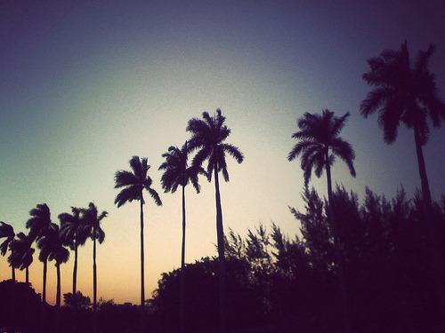 iphone-pictures-jordan