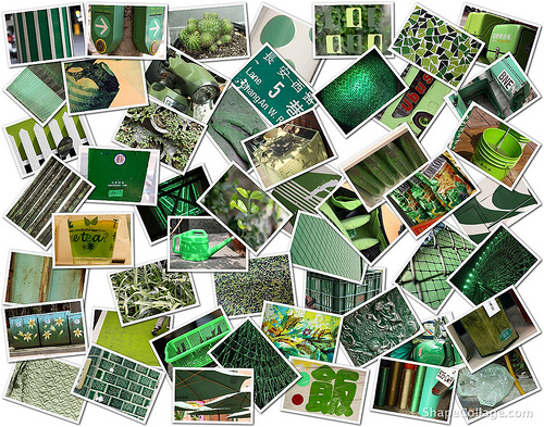 Shoot by color green - collage