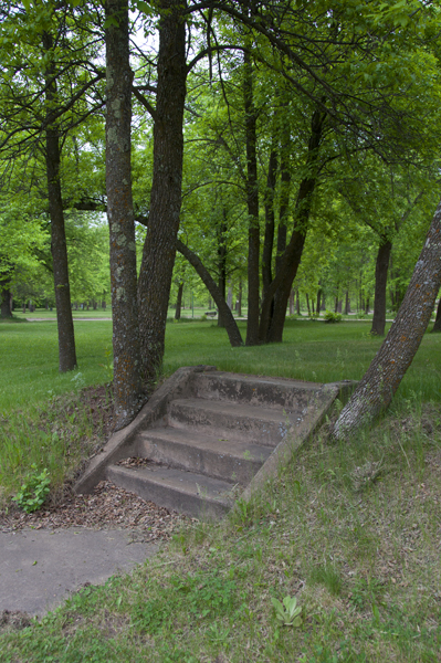 Steps Leading to an Abandoned Foundation