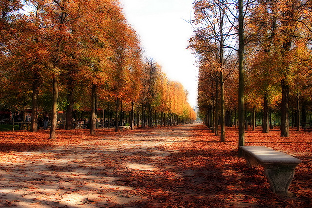 15 Awesome Autumn Photos To Fall For