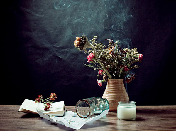 20 Still Life Photography Examples