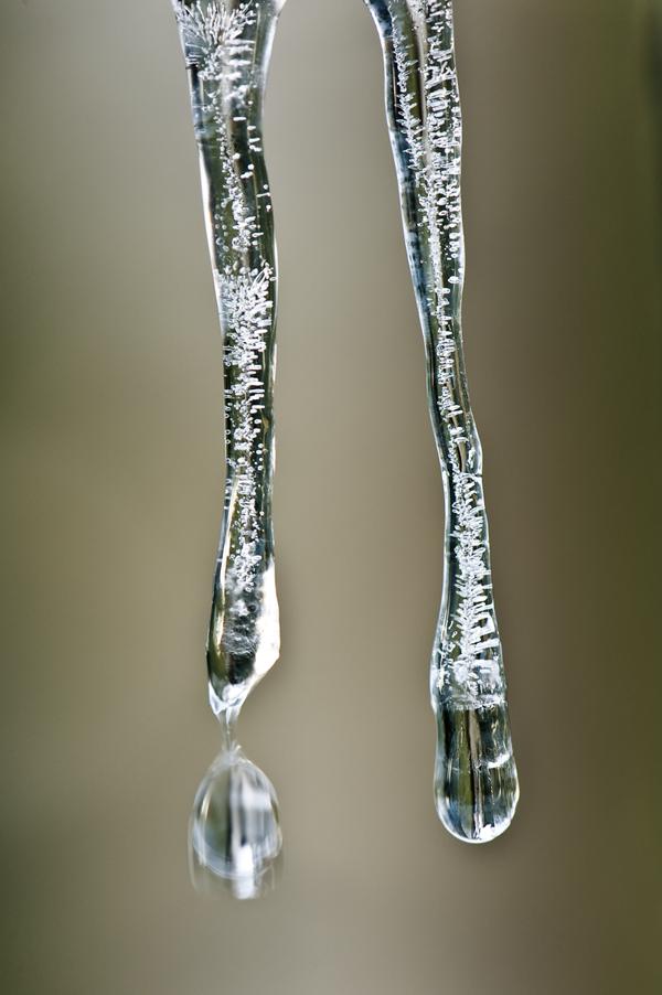 icicle_photo_Maxblack
