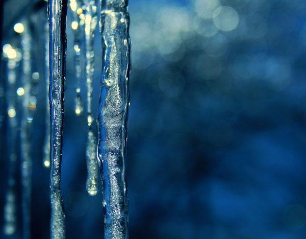 icicle_photos_bella