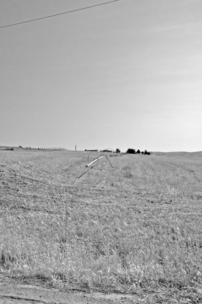 Washington Field